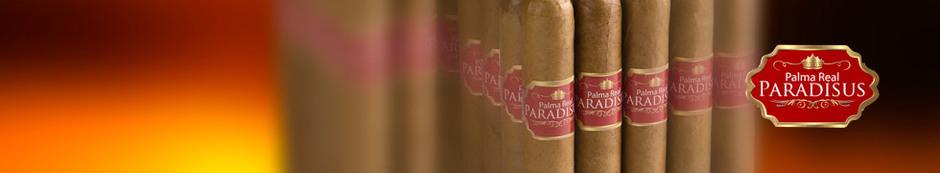 Palma Real Paradisus