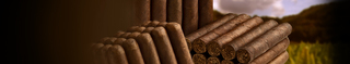 Nicaraguan Factory Overruns