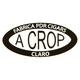 PDR A Crop