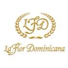 La Flor Dominicana Ligero Tubos 250