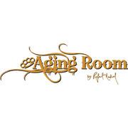 Aging Room Core by Rafael Nodal
