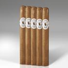 Casa de Garcia Churchill Fresh Loc 5-Pack