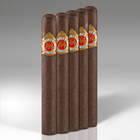 Maria Mancini Robusto Larga 5-Pack