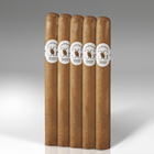Casa de Garcia Connecticut Churchill Fresh Loc 5-Pack