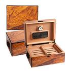Cigar Humidor Colonial