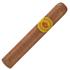 Mayorga Robusto
